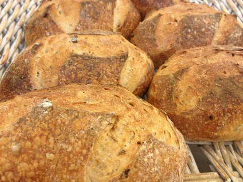 Panes de trigo y centeno con masa madre, en Harina, santuario de la masa madre en Madrid