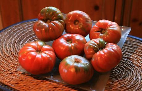 El tomate rosa de montaña ha sufrido el abandono derivado de la propia dejadez de los enclaves rurales. .Namlebee
